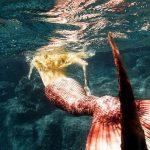 Ribe: Znak starih duša
