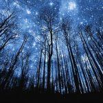 Iznenađujuće činjenice o znakovima zodijaka 1