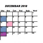 Najava programa za DECEMBAR 2018